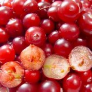 cranberries - culture and cuisine recipe series with chef jes: berry apple compote