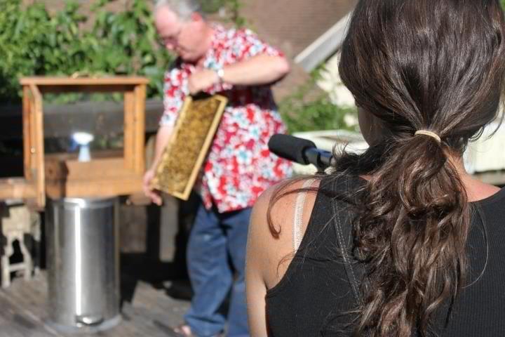 Dayna Reggero Steve's Bees